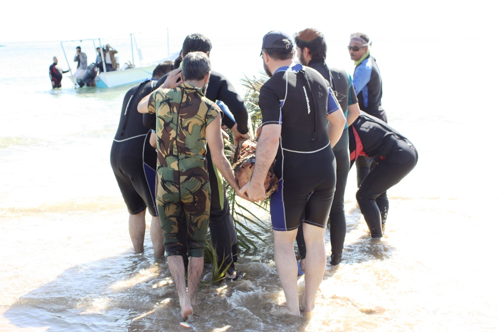 planting palm tree at the depth of 40 meters in water