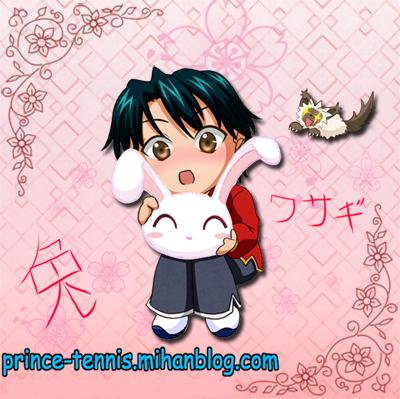 http://s7.picofile.com/file/8233695334/ryoma_chibi_with_usagi_by_ryocutema_d38oi57.jpg