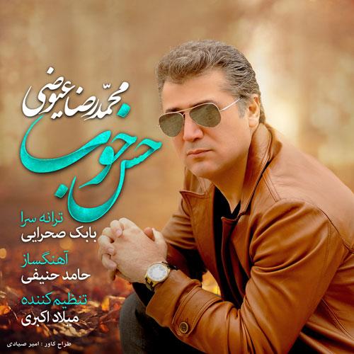 Mohamadreza Eyvazi - Hese Khob