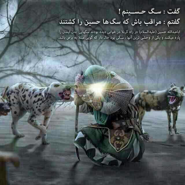 سگ حسینم