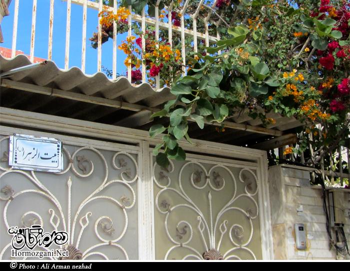 http://s7.picofile.com/file/8236010892/Hormozgani_Net_Armannezhad_zahra.jpg