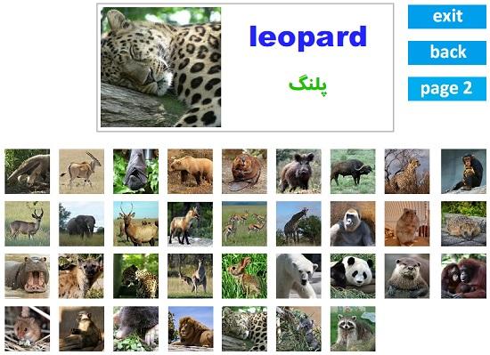 حیوانات در زبان انگلیسی