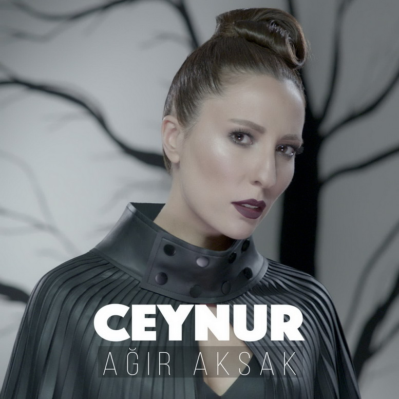 http://s7.picofile.com/file/8238369192/ceynur_agir_aksak.jpg