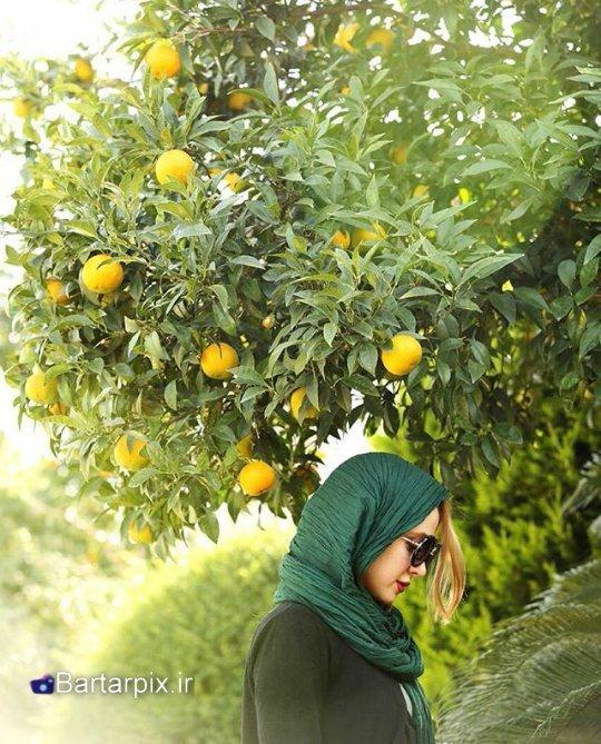 http://s7.picofile.com/file/8239269750/www_bartarpix_ir_elnaz_habibi_bahman_94_4_.jpg