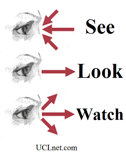 See_Look_Watch