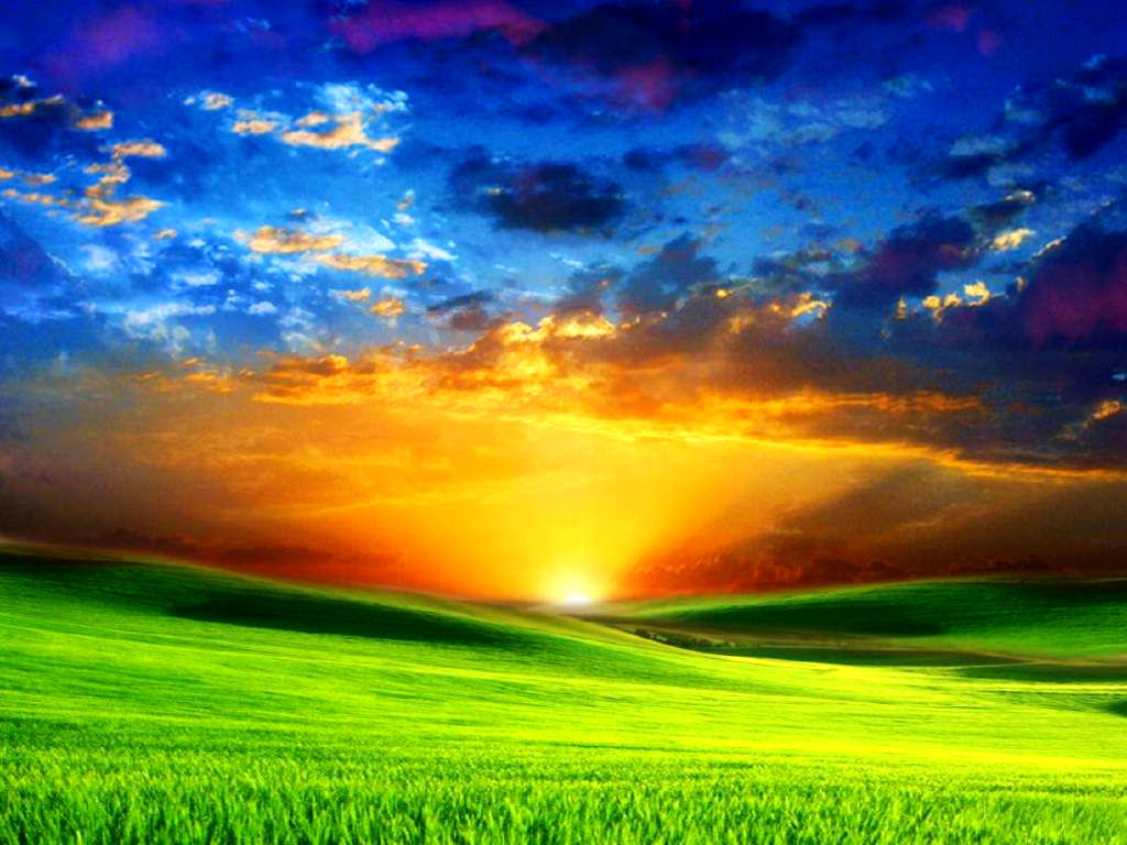 http://s7.picofile.com/file/8240906676/funchiz_com31312.jpg