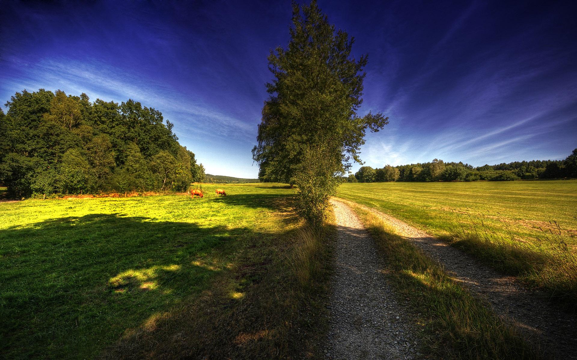 http://s7.picofile.com/file/8240906776/MahPic_Com_Beautiful_Landscapes_71_.jpg