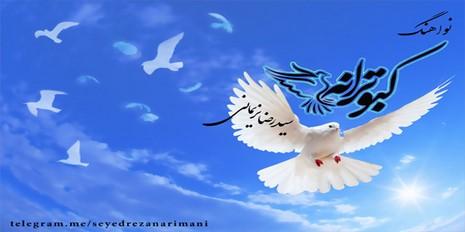 نواهنگ کبوترانه