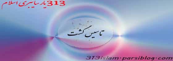 313 یار سایبری اسلام
