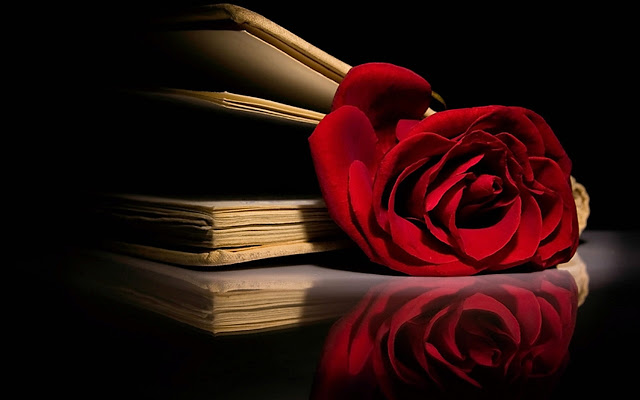 http://s7.picofile.com/file/8246013384/Red_Red_Rose_roses_11662034_1280_800.jpg