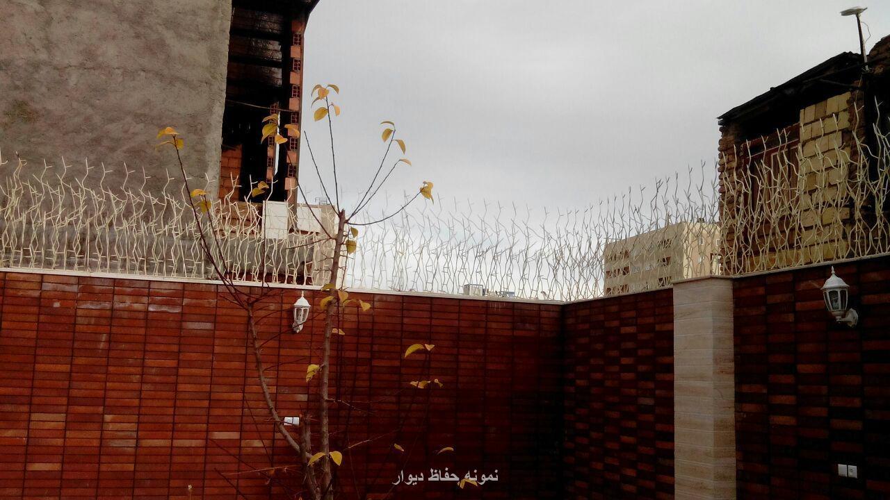 نمونه کار حفاظ روی دیوار  کرمان بلوار امير کبير روبروي باغ بهرامي