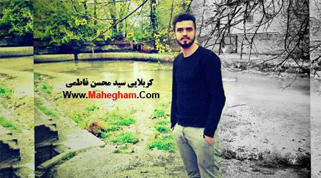 کربلایی سیدمحسن فاطمی-گلچین مراسمات دی 95 -هيئت عزاداران چادر خاکی مشهد