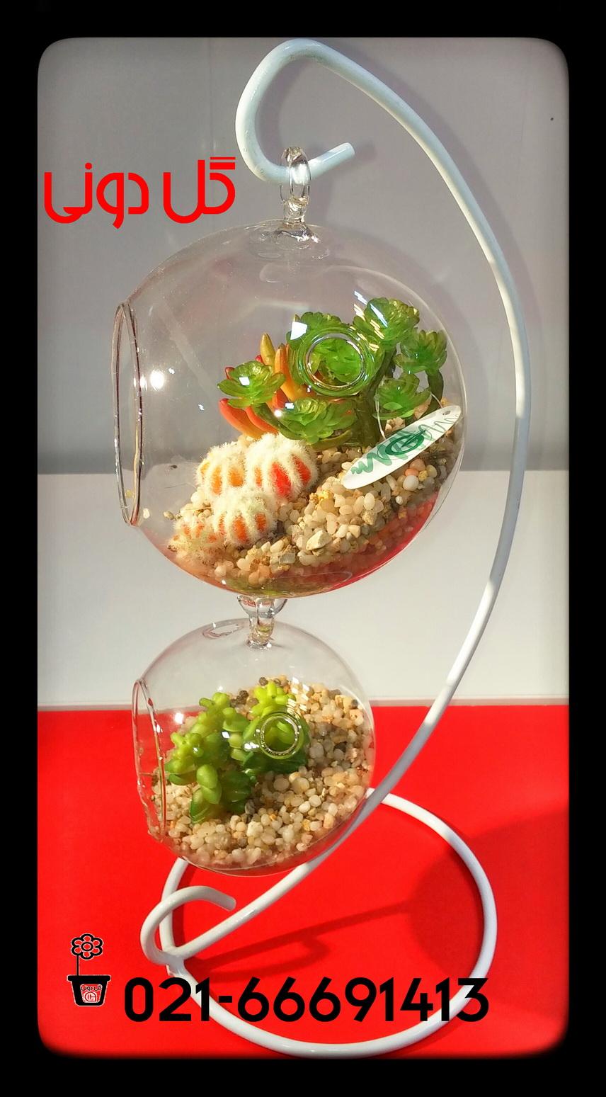 فروشگاه گل دونی 02166691413 - تراریوم ، فروشگاه گل دونی ، کاکتوس ...تزئینات گیاهی