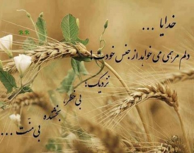 Image result for ببخش حتی اگه نبخشند تو را