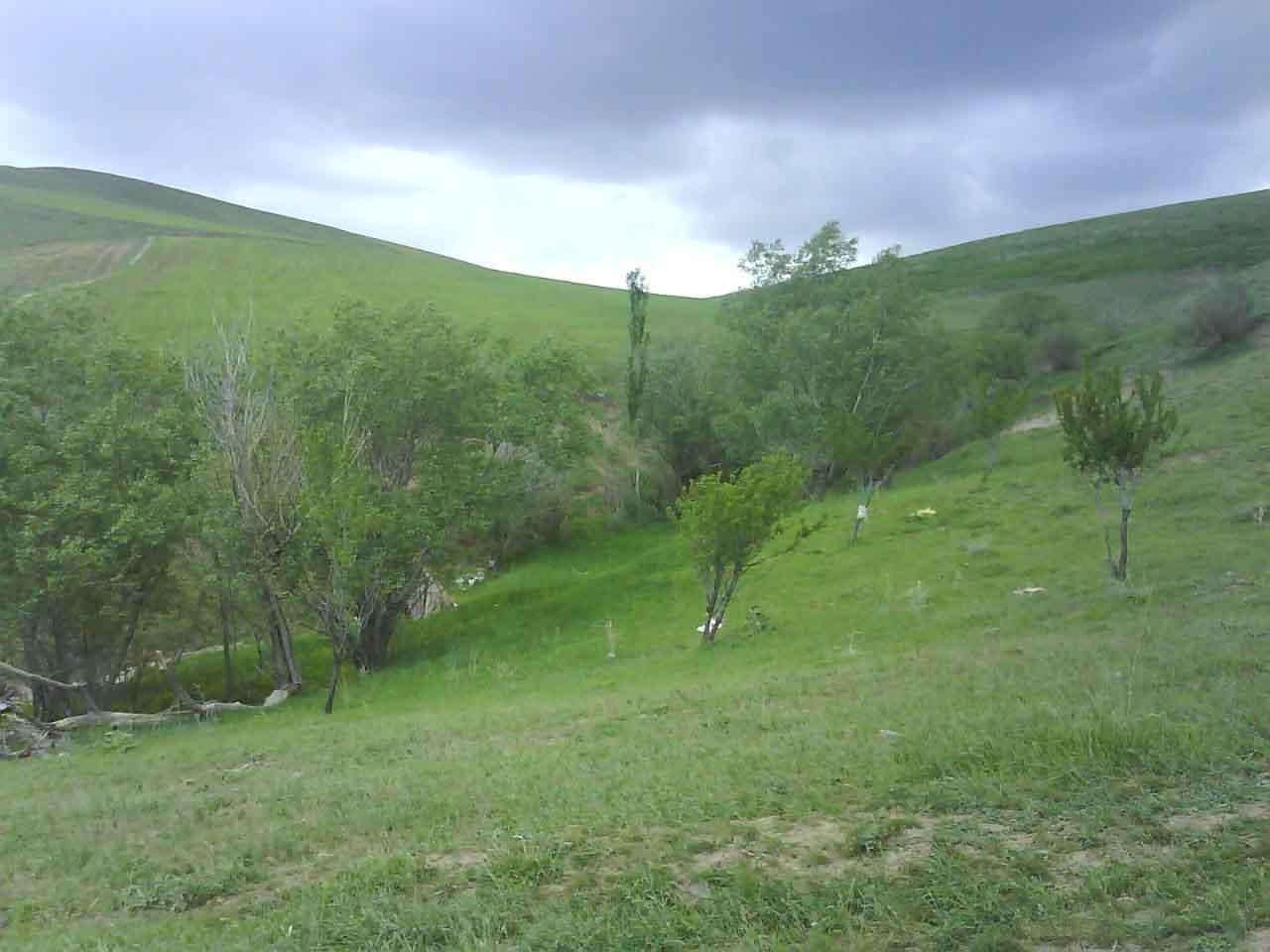 دره بلاغی