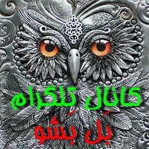 کانال تلگرام بَل بَشو