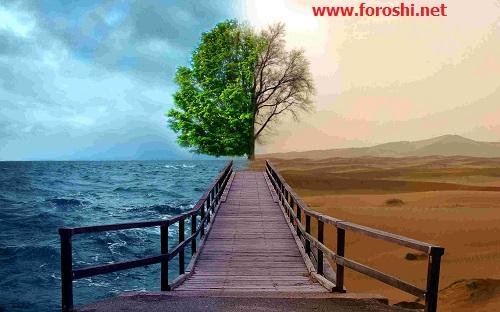 بررسی وضعیت محیط زیست