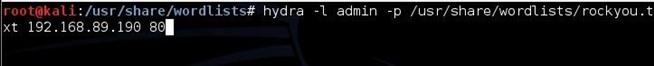 hack_like_pro_crack_online_passwords_wit