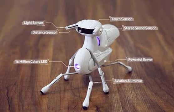 فناوری ساخت ربات مورچه ای +عکس , عمومی
