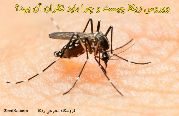 ویروس زیکا | زیکا