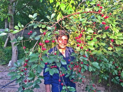 اوضاع و احوال حمید گودرزی بعد از جدایی از همسرش ؟ , اخبار فرهنگ وهنر