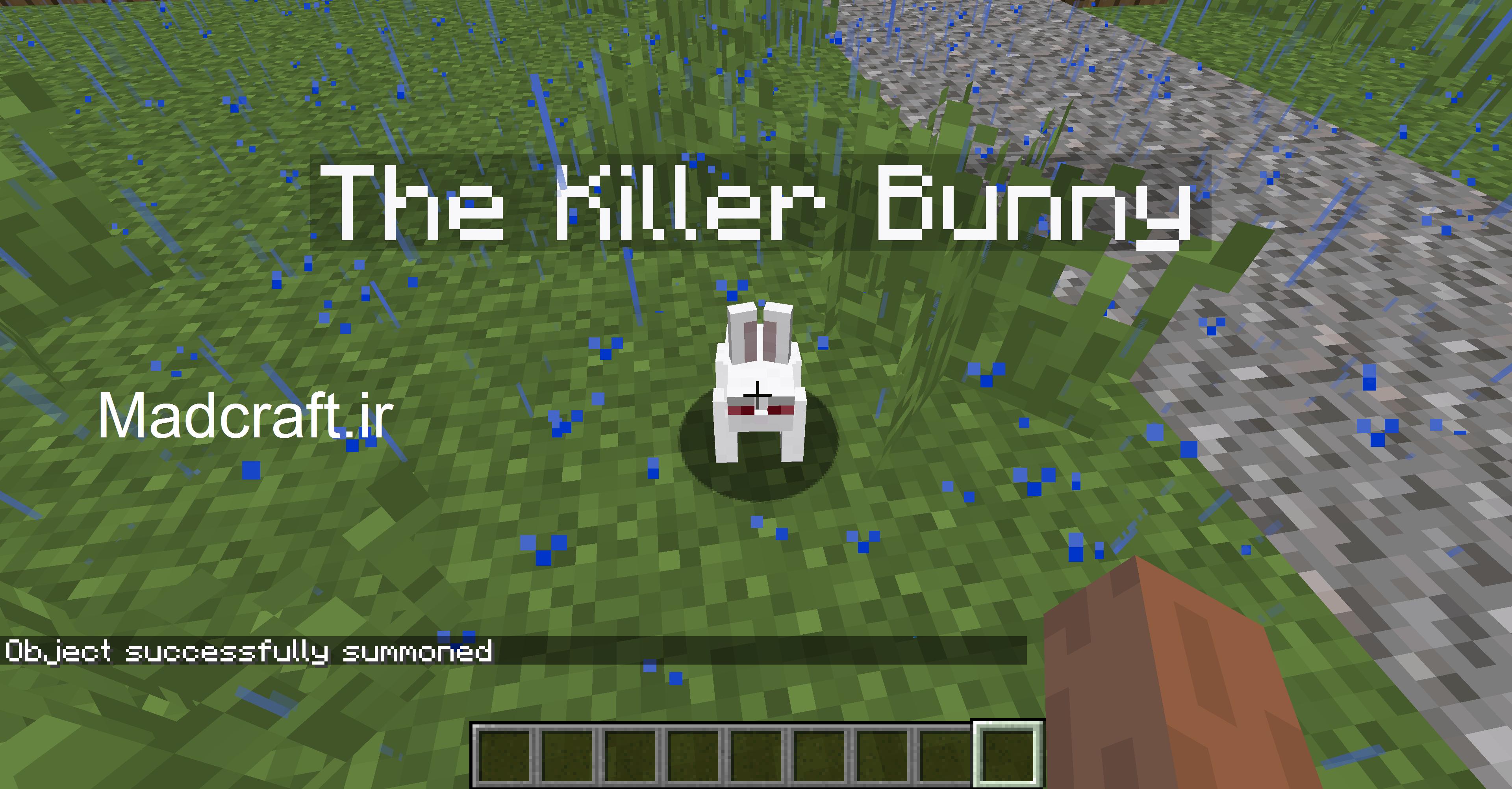خرگوش قاتل