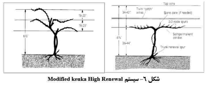 سیستم Modified keuka High Renewal