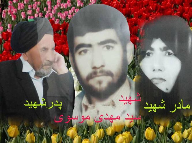 http://s7.picofile.com/file/8375812718/Tulip_Flower_Wallpaper_6.jpg