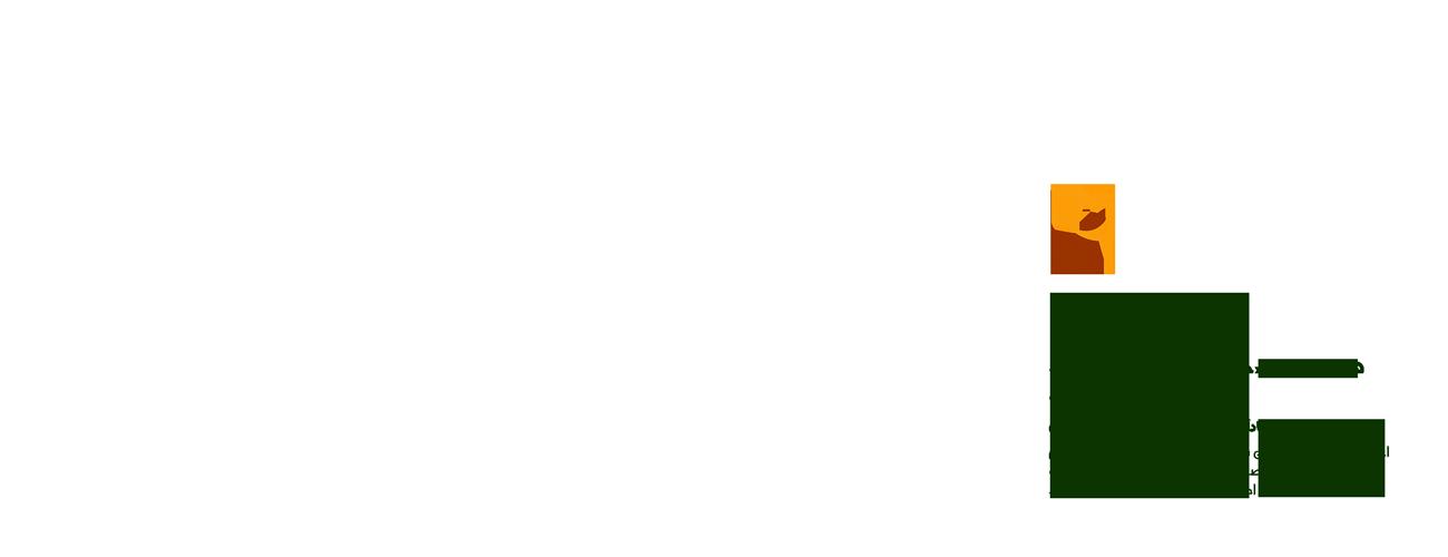 جشنواره فجر مشهد بلیط
