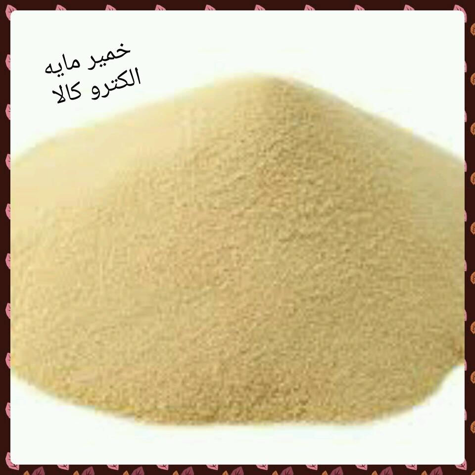 ین خمیرمایه موجودی ذره بینی است که در نتیجه رشد آن در خمیر، گاز کربنیک و سایر مواد آلی تولید می شود. گاز کربنیک حاصله باعث افزایش حجم، پوکی و تخلخل نان و سایر ترکیبات آلی باعث افزایش ارزش تغذیه ای و عطر و طعم خوش نان می گردند