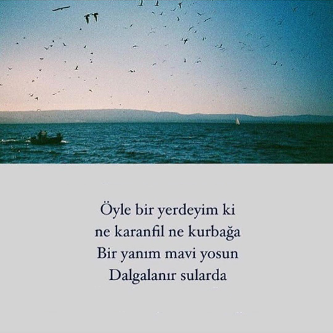 http://s7.picofile.com/file/8389900392/z8_Ayten_Rasul_Dostum_Dostum_.jpg