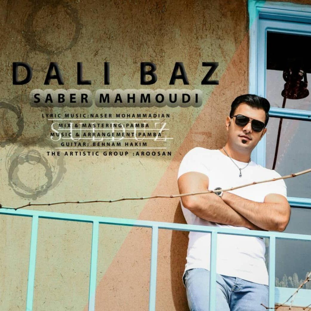 http://s7.picofile.com/file/8392346984/16Saber_Mahmoudi_Dali_Baz.jpg